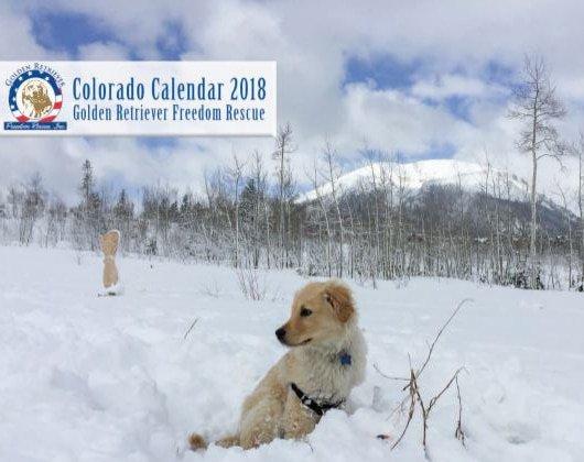 2018 GRFR Calendars
